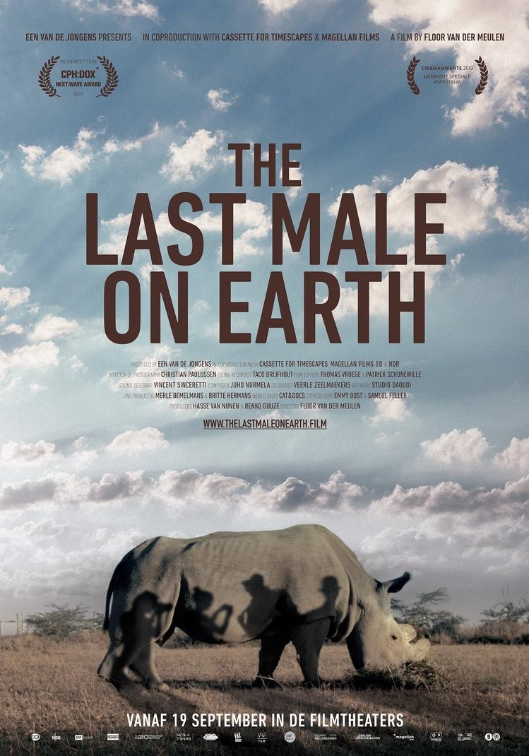 De poster van The Last Male on Earth