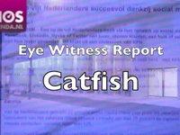 Het publiek over Catfish, 30-11-2010