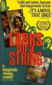 Poster Larks on a String