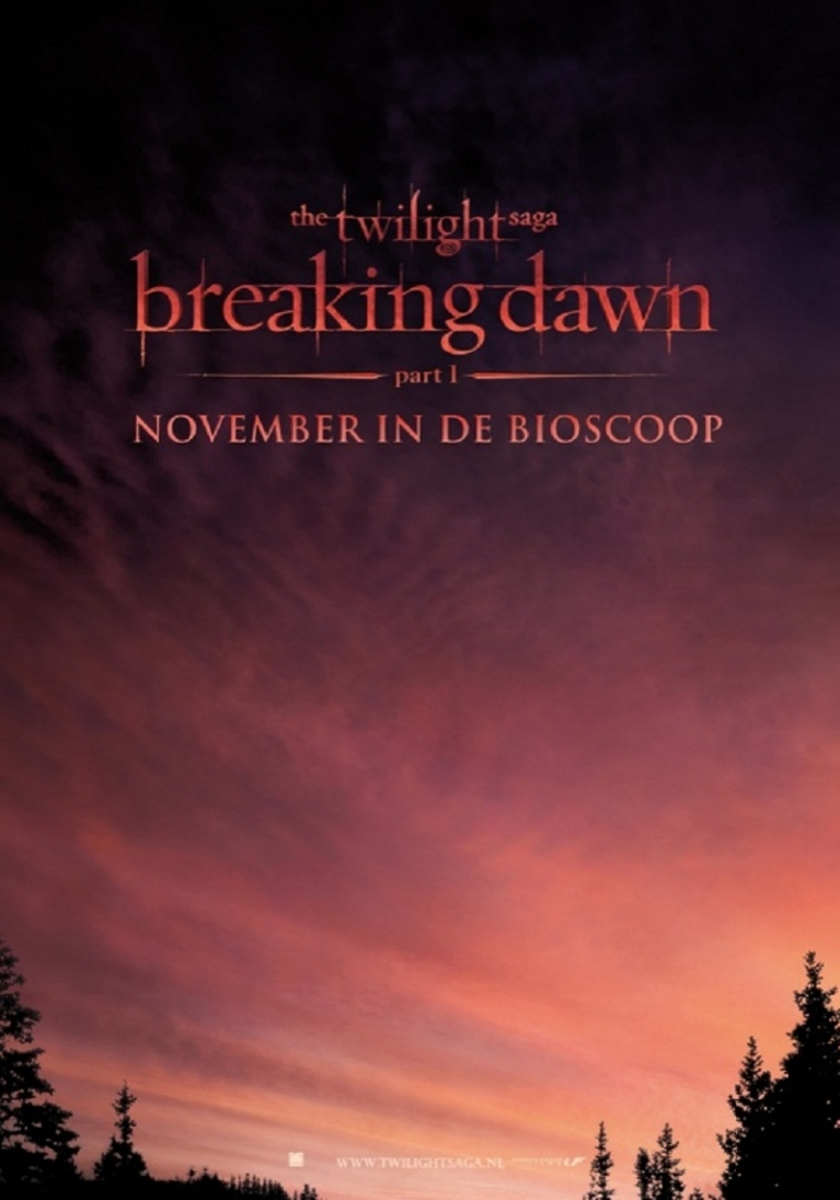 Boekkaft Breaking Dawn