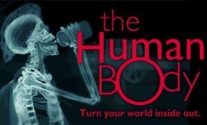 Still uit 'The Human Body' (c) 2001 Imax