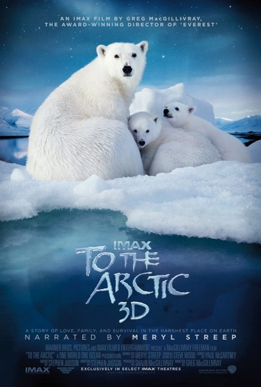 To the Arctic 3D poster, copyright in handen van productiestudio en/of distributeur