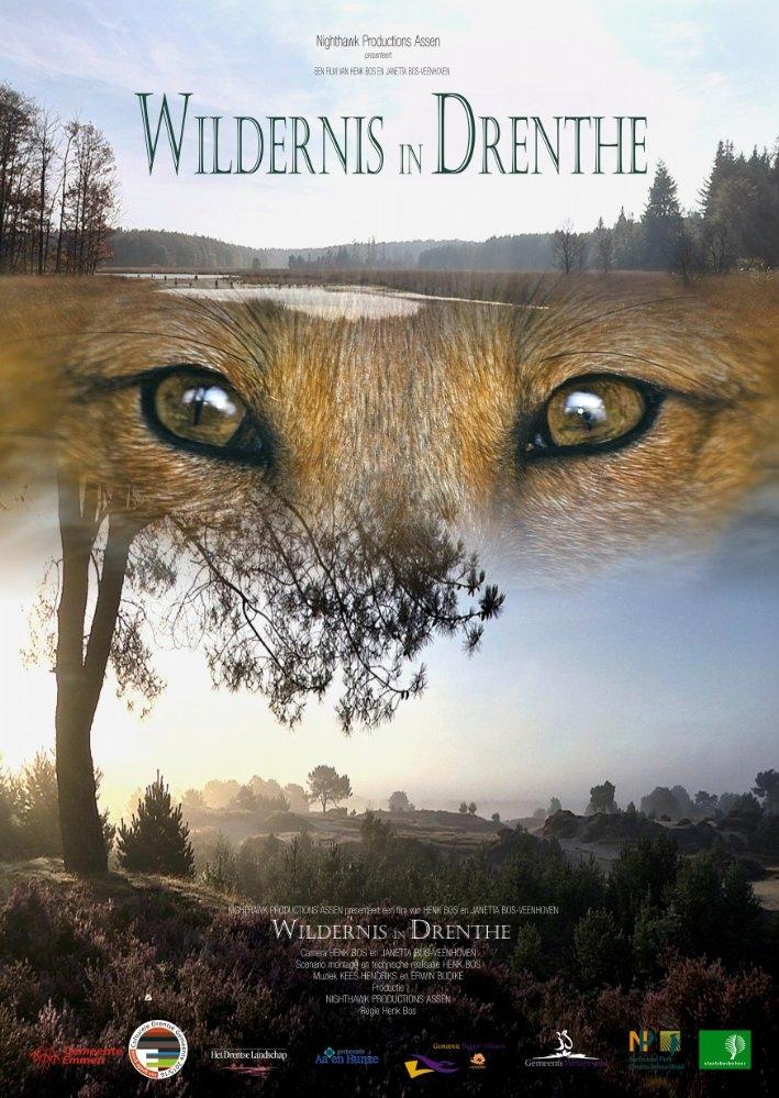 Wildernis in Drenthe poster, copyright in handen van productiestudio en/of distributeur