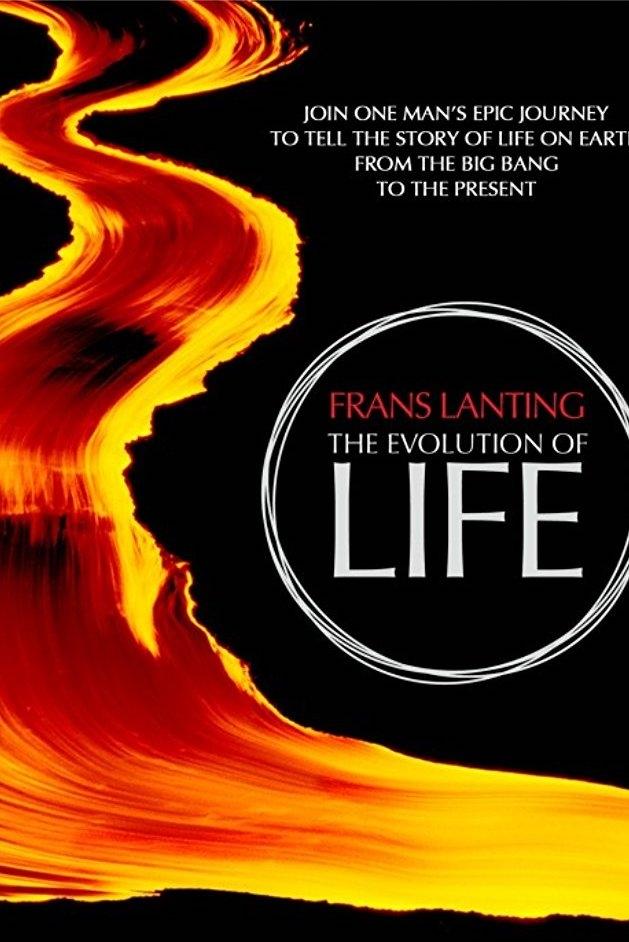 LIFE - Frans Lanting poster, copyright in handen van productiestudio en/of distributeur