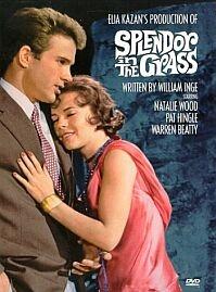 Poster 'Splendor in the Grass' © 1961 Warner Bros.