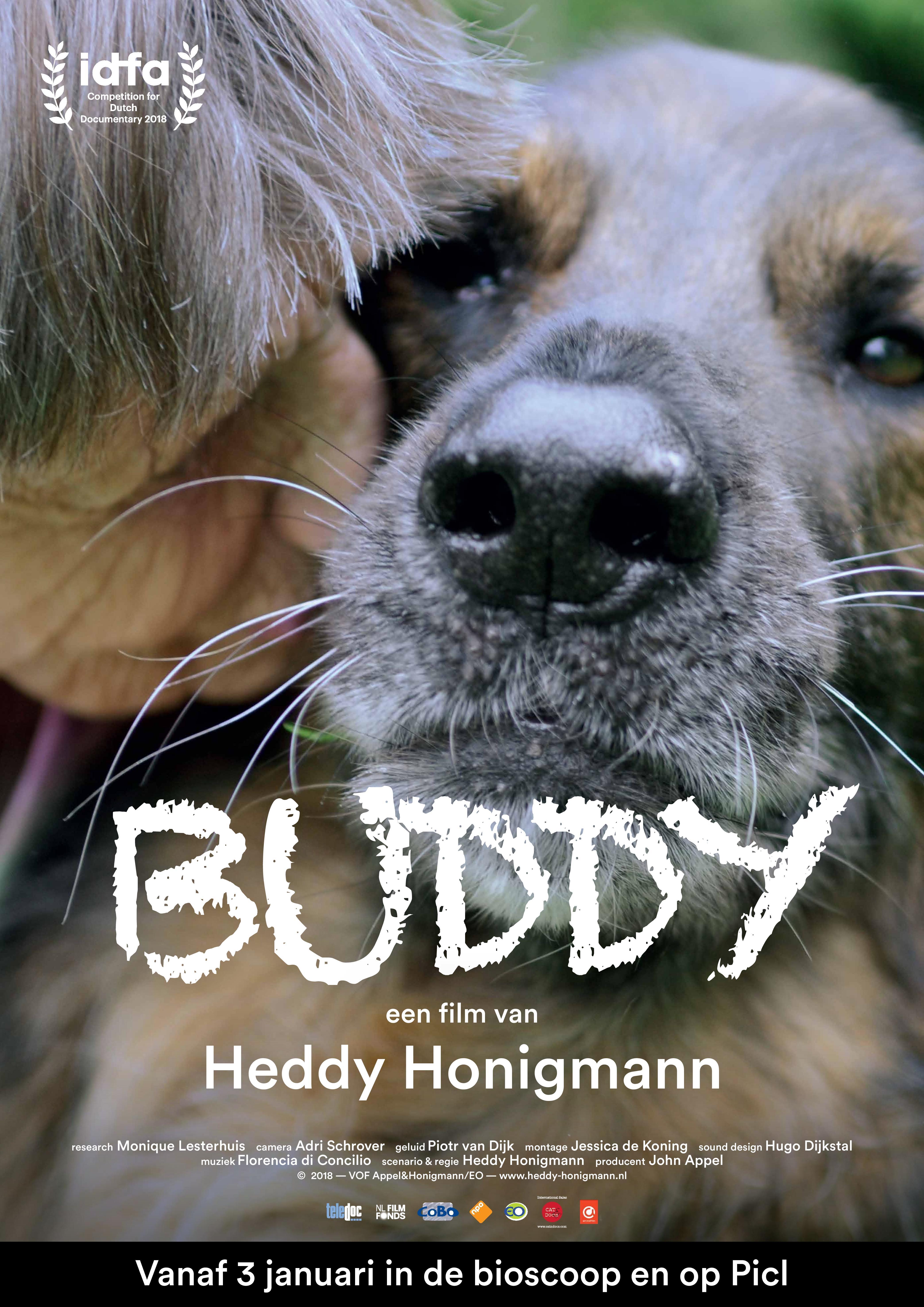 Buddy poster, copyright in handen van productiestudio en/of distributeur