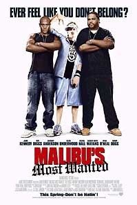 poster 'Malibu's Most Wanted' © 2003 Warner Bros.