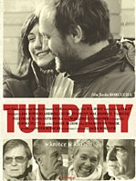 Poster Tulipany