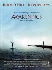 Poster Awakenings