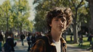 Beautiful Boy: Timothée Chalamet (Nic Sheff)