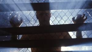 Blade Runner - Final Cut: Rutger Hauer (Roy Batty)