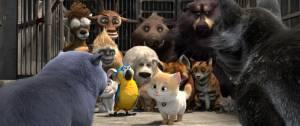 Cats: op zoek naar Kattopia (NL) filmstill