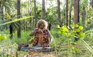 Charlie's Country: David Gulpilil (Charlie)