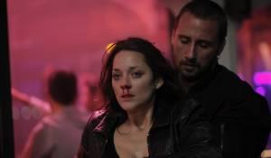 De rouille et d'os: Marion Cotillard (Stephanie) en Matthias Schoenaerts