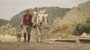 Donkeyote: Manuel Molera Aparicio (As Zichzelf)