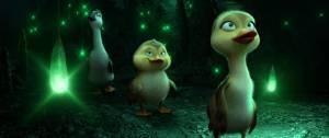 Duck Duck (NL) filmstill