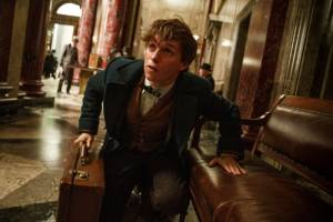 Fantastic Beasts and Where to Find Them: Eddie Redmayne (Newt Scamander)