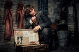 Fantastic Beasts: The Crimes of Grindelwald: Eddie Redmayne (Newt Scamander)