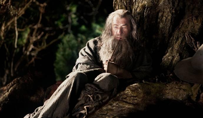 Ian McKellen (Gandalf)