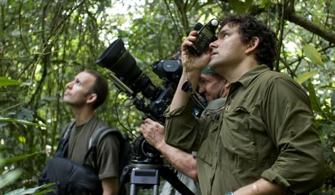 Chimpanzee filmstill