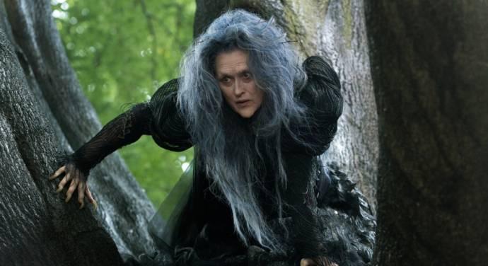 Meryl Streep (The Witch)