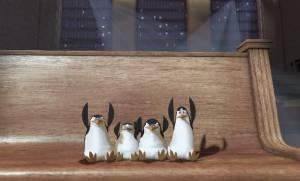 De anders zo koele pinguins zijn er gloeiend bij
