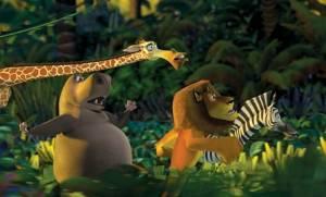Op de vlucht in de jungle van Madagascar