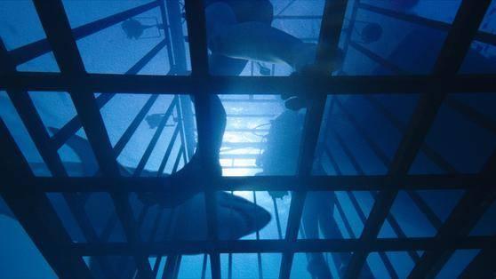 47 Meters Down filmstill