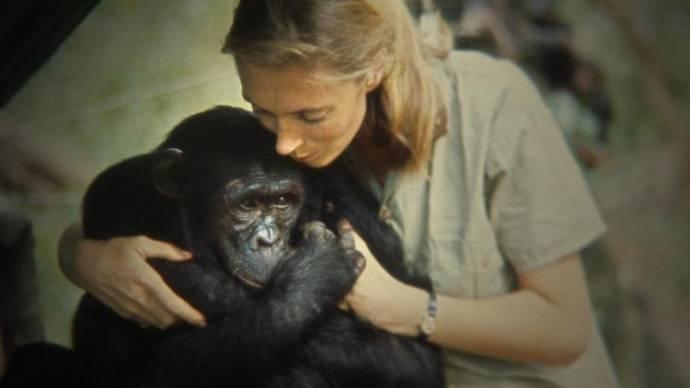 Jane Goodall (Zichzelf)