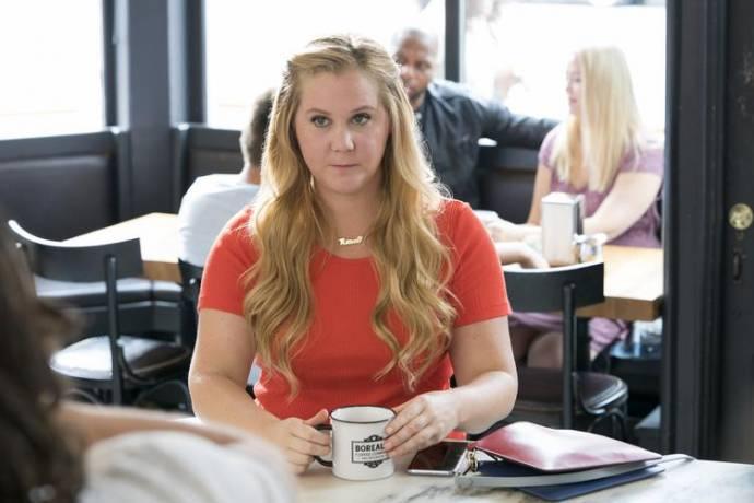 Amy Schumer (Renee Barrett)
