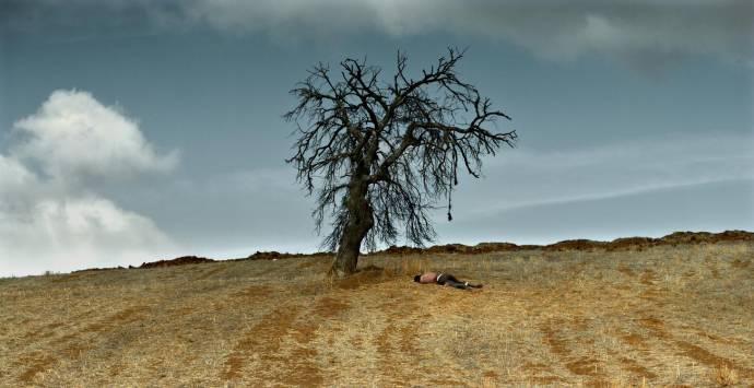 The Wild Pear Tree filmstill