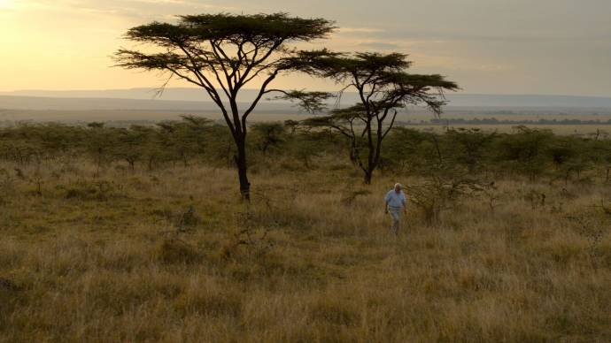 David Attenborough: A Life on Our Planet filmstill