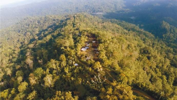 Into the Jungle filmstill