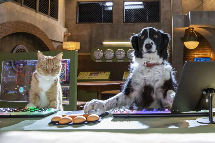 Cats & Dogs: Paws Unite filmstill