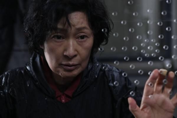 Hye-ja Kim (Mother)