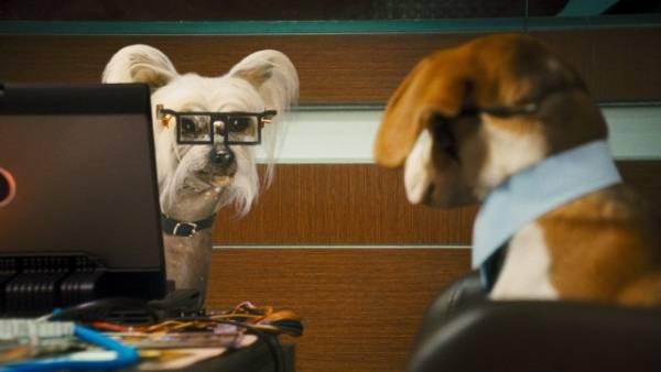 Cats & Dogs: The Revenge of Kitty Galore filmstill