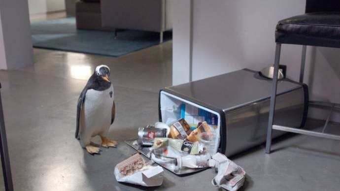 Mr. Popper's Penguins filmstill