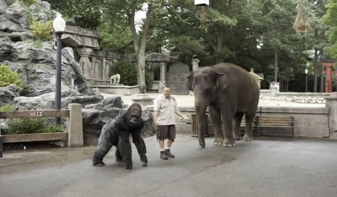 Zookeeper filmstill