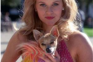 Legally Blonde: Reese Witherspoon (Elle Woods)