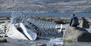 Leviathan: Aleksei Serebryakov