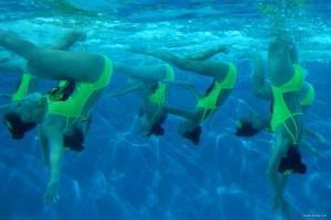 Naissance des pieuvres