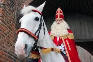 Sinterklaas & Het Gouden Hoefijzer: Wilbert Gieske (Sinterklaas)