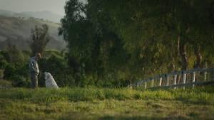 The Biggest Little Farm filmstill