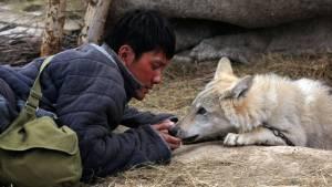 Wolf Totem filmstill 2
