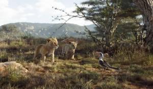 The Lion King (NL) filmstill