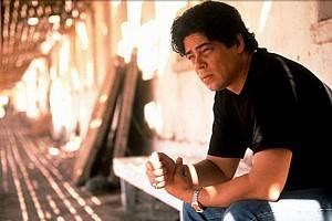 Benicio Del Toro als Javier Rodriguez