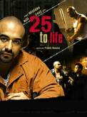 25 to Life (2008)