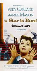 A Star Is Born (1954) (1954)