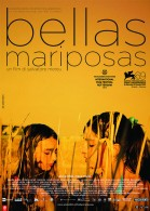 Bellas mariposas poster