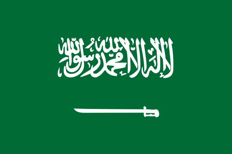 De vlag van Saoedi-Arabië.